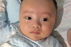天機化科座命宮男寶寶-2個月大
